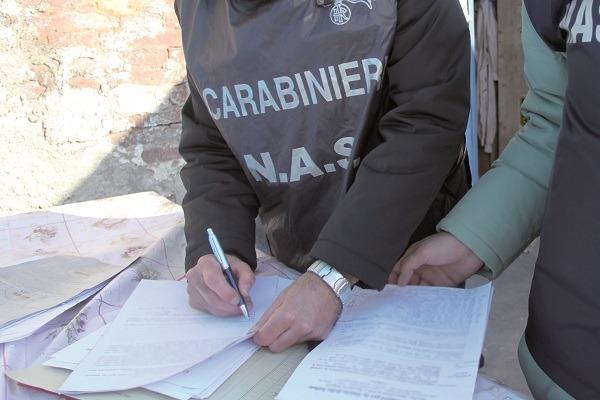 Agro Nocerino, chiusi due depositi di conserve