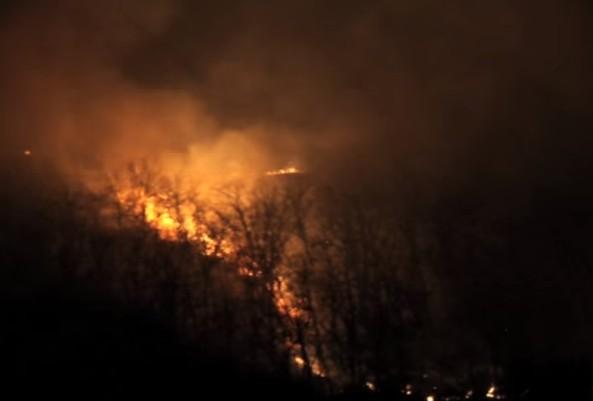 Vasto incendio agli Astroni, a fuoco ettari di vegetazione