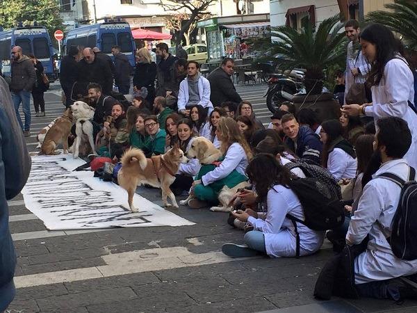 """Aversa, 300 studenti in piazza: """"Diritto allo studio e scuole sicure"""""""