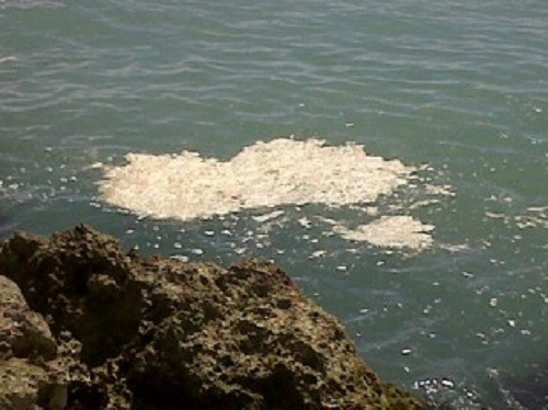 Liquami a mare, denunciato titolare di stabilimento a Sorrento