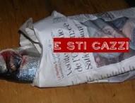 Michaela Biancofiore lascia Forza Italia dopo 26 anni – L'angolo sticazzi
