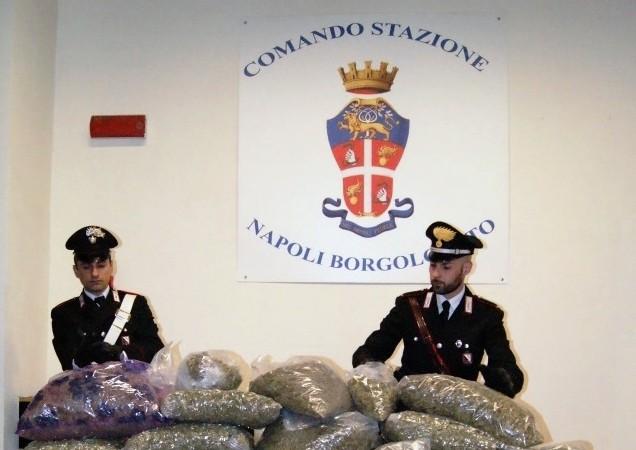 Napoli, trovati 55 kg di marijuana