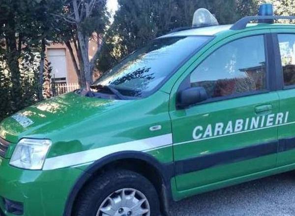 Salerno, sequestrati 18.000 shoppers di plastica: sanzioni per 80.000 euro