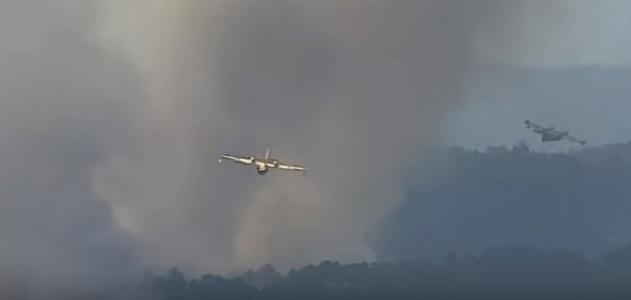 Vasto incendio nell'area collinare di Pollica
