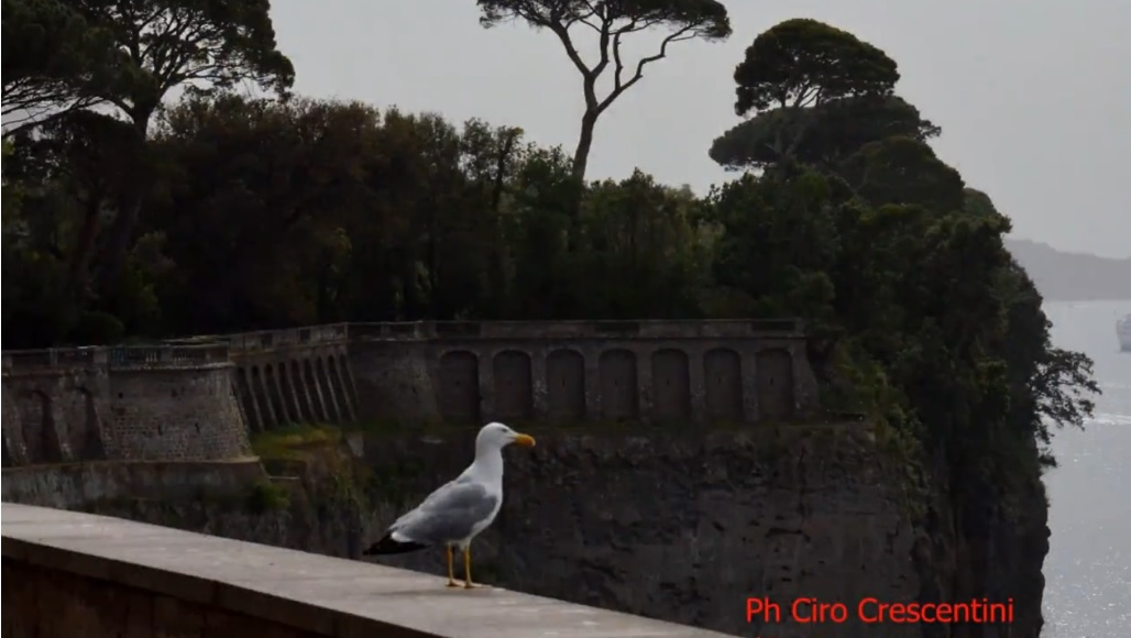 Campania, saranno recuperati 17 luoghi culturali, penalizzata la provincia di Napoli