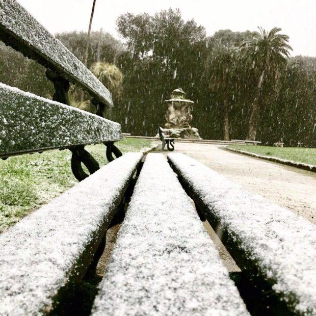 La foto del giorno: Napoli,  fiocchi di neve al Bosco di Capodimente
