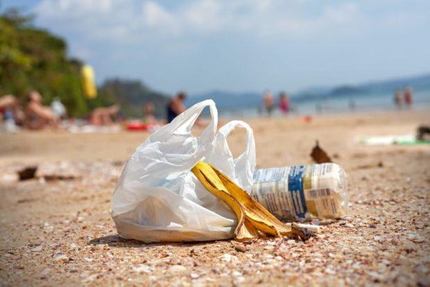 Appello ai sindaci di Capri, Ischia e Procida contro la plastica galleggiante