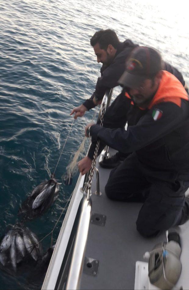 Salerno, Guardia Costiera sequestra 120 chili di tonno rosso