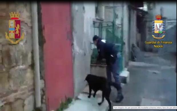 Cani della Polizia e della Guardia di Finanza fanno scoprire pistola e droga a Capodichino