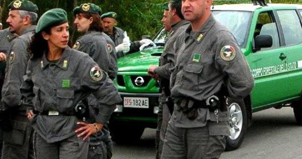 Salerno, Sarno:  carabinieri forestali sequestrano autolavaggio, sversava rifiuti nel Rio Foce