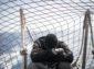 Sea Watch, magistratura mette all'angolo Salvini: nave sequestrata, sbarcati 47 migranti