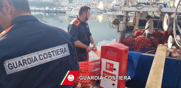 Napoli, frutti di mare non commestibili: blitz della Guardia Costiera
