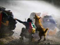 Cile, violenze e proiettili di gomma sui manifestanti(Video)