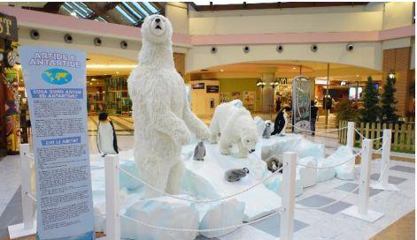 144 animali di peluche in mostra a Salerno