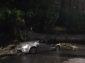 Napoli, maltempo abbatte alberi: tragedie sfiorate a Posillipo