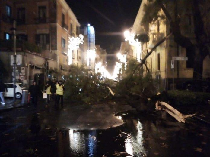 Bomba d'acqua su Salerno, alberi crollati al centro