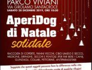 """Napoli, """"Aperidog"""" per donare coperte e cibo ai rifugi per animali abbandonati"""