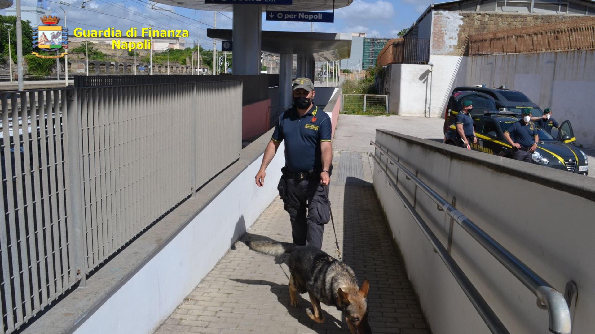 Napoli, controlli Guardia di Finanza VI Municipalità: 13 illeciti rilevati per droga e contrabbando